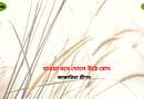 হাওয়া বনে দুলে উঠে রোদ – জাকারিয়া প্রীণন